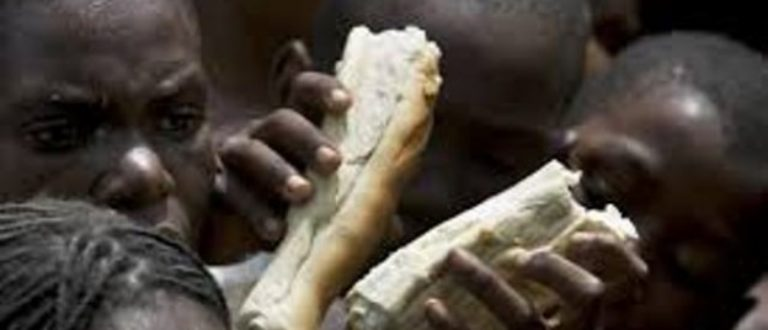 Article : Il y a des vautours en Haïti